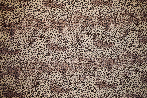Animal print, textura de leopardo