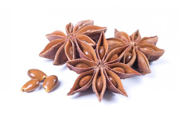 Anis estrelado especiaria frutas e sementes isoladas no branco