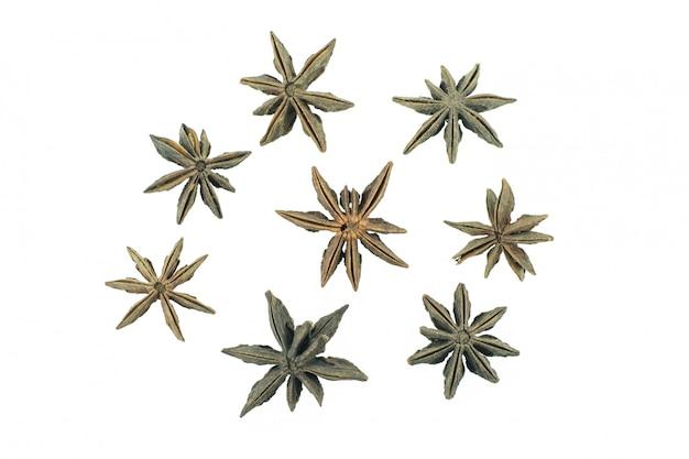 Anis estrelado especiarias frutas e sementes isoladas no fundo branco closeup