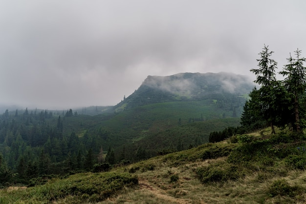 Anoitecer nas montanhas antes de uma tempestade e uma tempestade em um dia chuvoso e nevoento