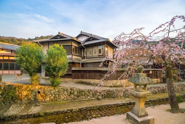Antiga aldeia com sakura em miyajima, hiroshima, japão