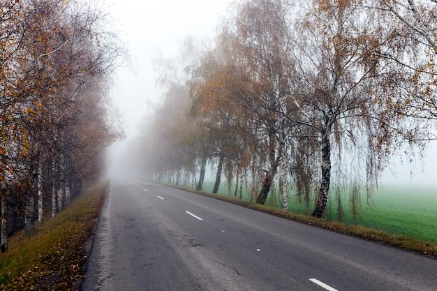 Antiga estrada de asfalto no outono, durante forte nevoeiro. nas marcações brancas visíveis da estrada.