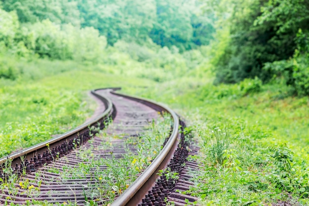 Antiga ferrovia zigue-zague entre uma densa vegetação em uma densa floresta