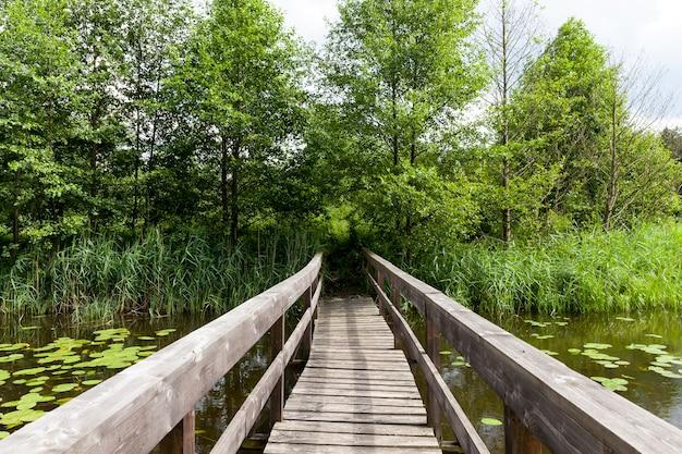 Antiga ponte de madeira construída no lago