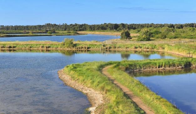 Antigas lagoas de água do mar para cultivo de ostras e caminho em um prado