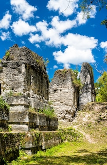 Antigas ruínas maias em tikal. patrimônio mundial da unesco na guatemala