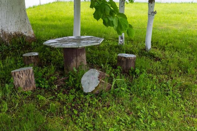 Antigo banco de madeira e mesa sob uma árvore à beira do rio no verão