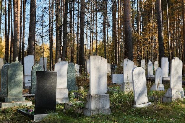 Antigo cemitério de outono com lápides de pedra sob os pinheiros