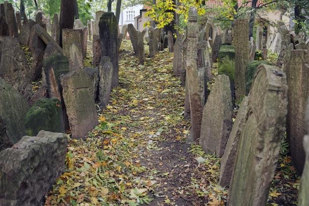 Antigo cemitério judeu em praga