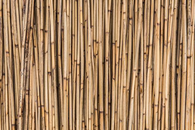 Antigo fundo de palha seca, textura de parede de bambu. conceito de fundo ecológico natural