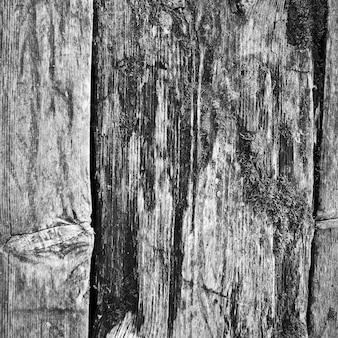 Antigo fundo de pranchas de madeira resistiu