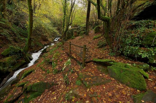 Antigo moinho de água restaurado ao lado de um pequeno rio na região da galiza, espanha.