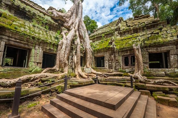 Antigo templo budista khmer em angkor wat, camboja. ta prohm prasat