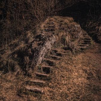Antigos degraus de pedra em ruínas abandonados na natureza cobertos de musgo perto da montanha