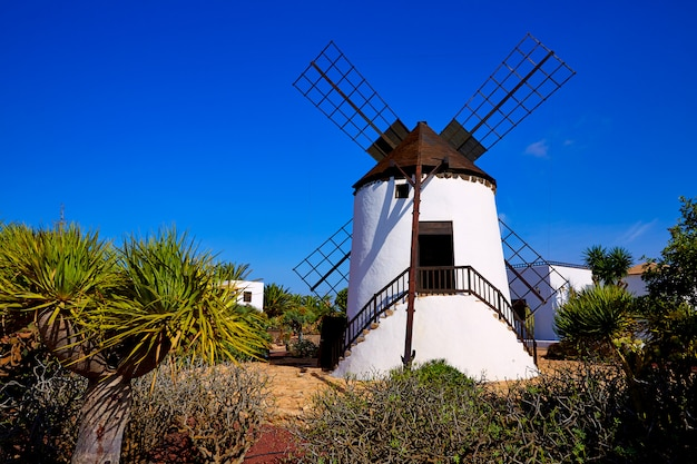 Antigua windmill fuerteventura em canary islands