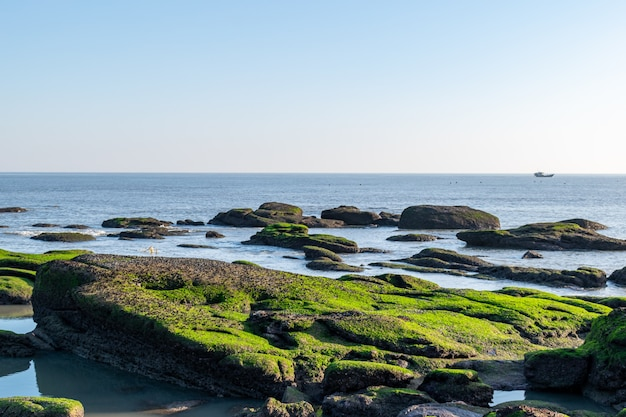 Ao entardecer, o recife da praia fica coberto de algas verdes, e a cor é muito bonita
