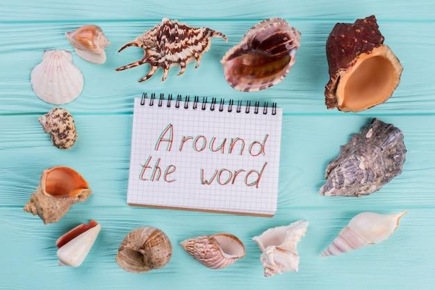 Ao longo do perímetro, há diferentes conchas do mar em fundo turquesa