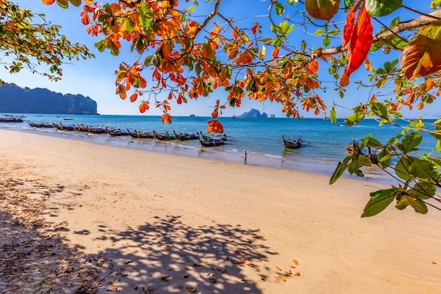 Ao nang beach e a luz da manhã