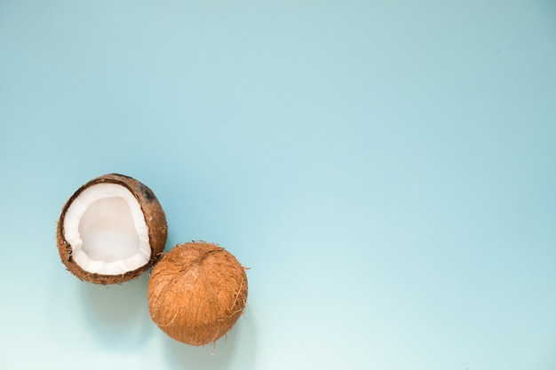 Apartamento leigos com cocos maduros no azul