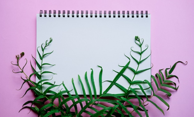 Apartamento leigos de mesa de trabalho mínima com notebook e planta verde