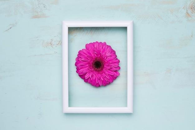 Apartamento leigos de quadro com conceito floral