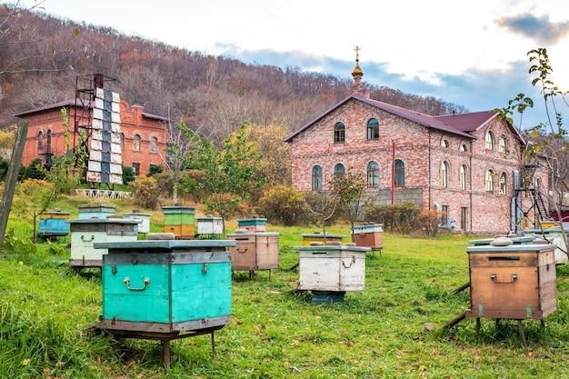 Apiário com colméias do mosteiro de são serafim