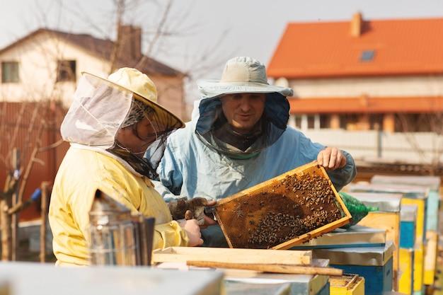 Apicultor colheita mel.