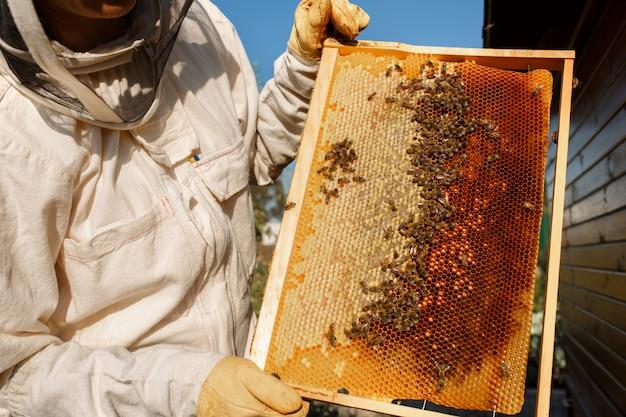 Apicultor feminino jovem segurar a moldura de madeira com favo de mel.