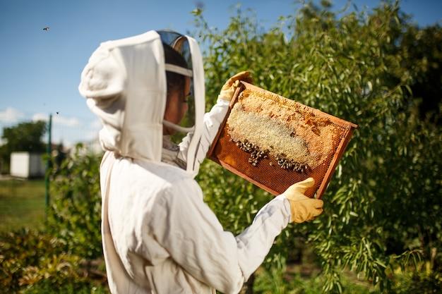 Apicultor jovem em uma fantasia de apicultor profissional, inspeciona uma moldura de madeira com favos de mel segurando