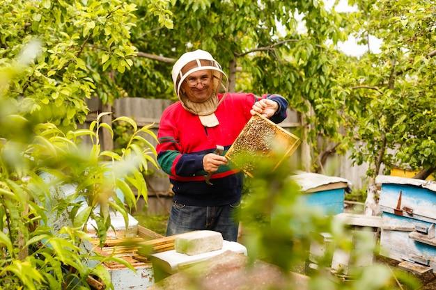 Apicultor trabalhando coletar mel