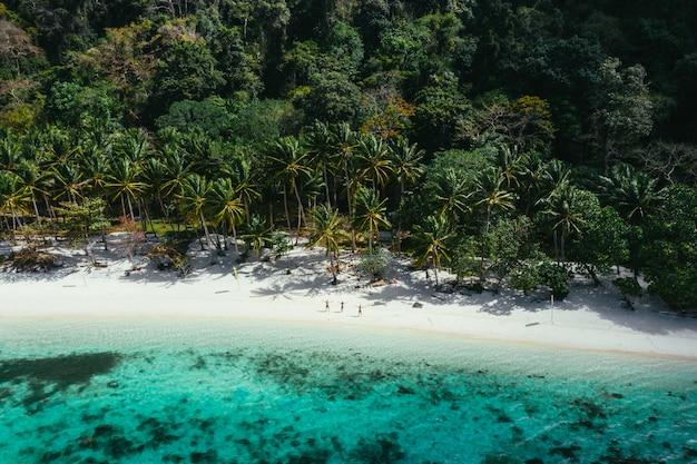 Aproveitando o tempo na praia. pessoas andando na areia branca, com selva tropical. conceito sobre viagens e natureza