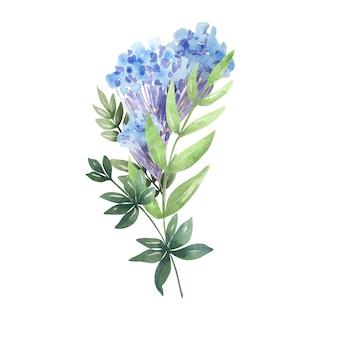 Aquarela com delicadas flores da primavera