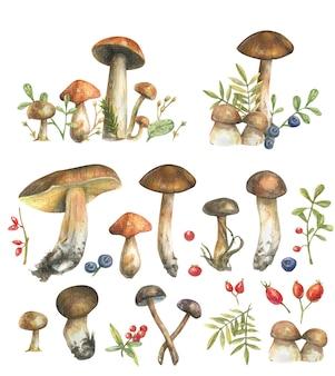 Aquarela cravejada de ramos de flores desenhadas à mão, cogumelos da floresta, ervas, bagas, aquarela