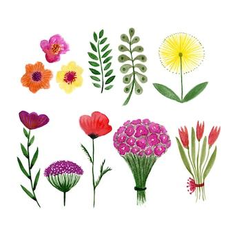 Aquarela floral conjunto de folhas e flores.