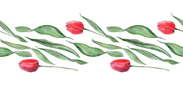 Aquarela fronteira sem costura com tulipas vermelhas elegantes. botões, flores e folhas