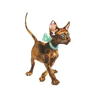 Aquarela gato oriental com laço. mão-extraídas gatinho de cabelo curto no fundo branco.