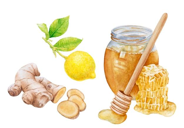 Aquarela gengibre, mel, limão em branco.