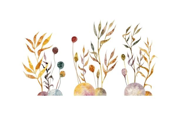 Aquarela mão desenhada ilustração de conjuntos com plantas ramos flores simples folhas pedras Foto Premium