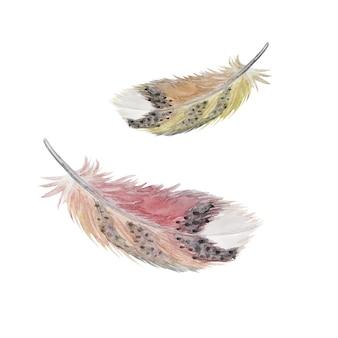 Aquarela penas penas isoladas, decoração de páscoa, ilustração de penas desenhada à mão