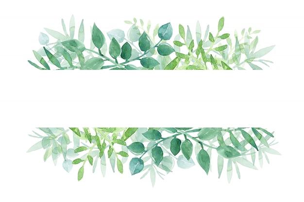Aquarela pintada à mão com folhas verdes em branco