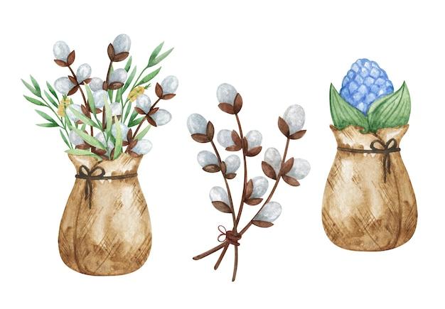 Aquarela salgueiro de páscoa isolado, jacinto de buquê de primavera, decoração de páscoa