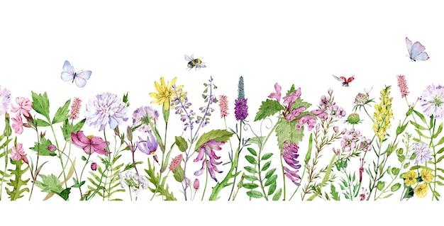 Aquarela sem costura fronteira com flores silvestres, abelhas, borboletas e joaninhas.