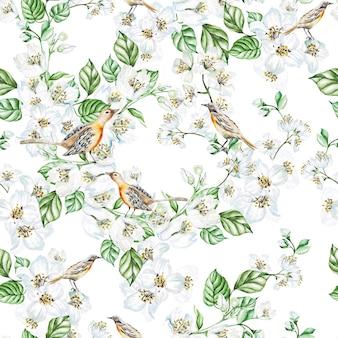 Aquarela sem costura padrão com flores de jasmim, pássaros. ilustração