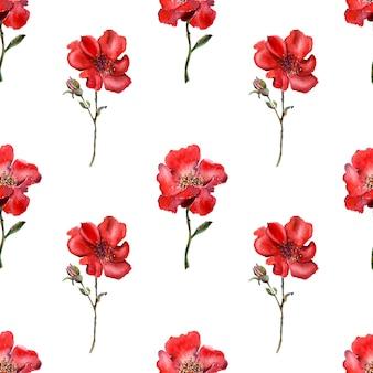 Aquarela sem costura padrão com flores decorativas brilhantes