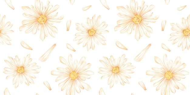 Aquarela sem costura padrão com ilustração de flor de camomila e pétala isolada no branco