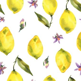 Aquarela sem costura padrão com ramo de limão cítrico