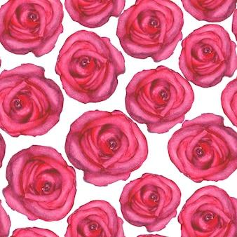 Aquarela sem costura padrão com rosas na superfície branca