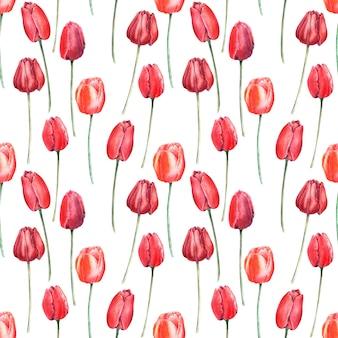 Aquarela sem costura padrão com tulipas vermelhas elegantes. botões, flores e folhas