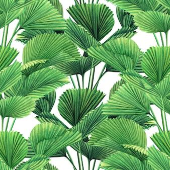 Aquarela tropical deixa sem costura de fundo