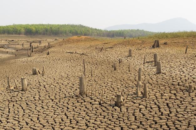 Aquecimento global, seca.